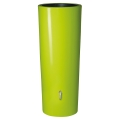 Lime Rain Barrel