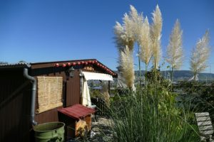 garden-shed-2825711_640